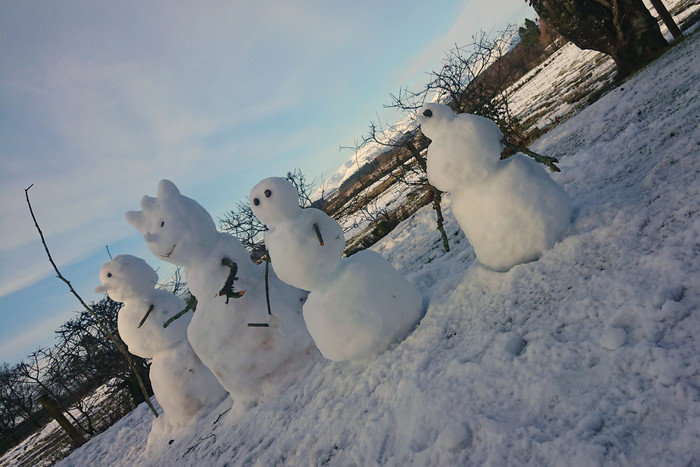 The Snowman's Family made by our Oak guests...