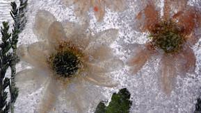 Nedfrosne blomster og gjenstander.