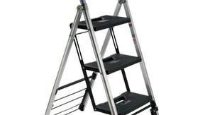 Franzus ladderkart.