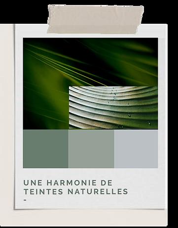Flornoy_palette_couleur_verts.png