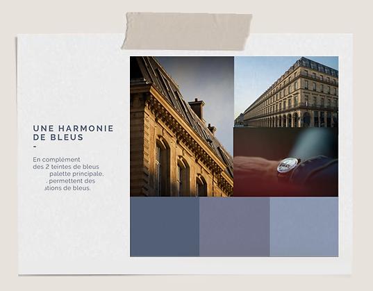 Flornoy_palette_couleur_bleus.png