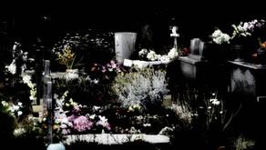 Les fleurs de l'au-delà