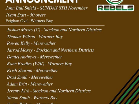 Newcastle Sub Districts Representative Selections