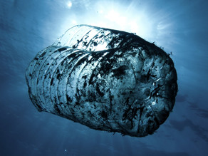 The Danger of Plastic Consumption and Ideas to Reduce it