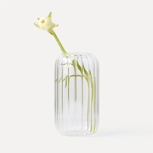 Homestead Clear Glass Vase (Line)