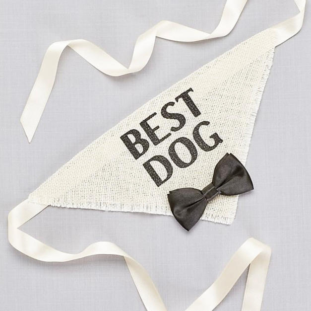 Best Dog Bandana (one size)