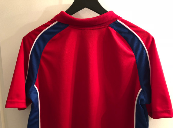 Back of Polo