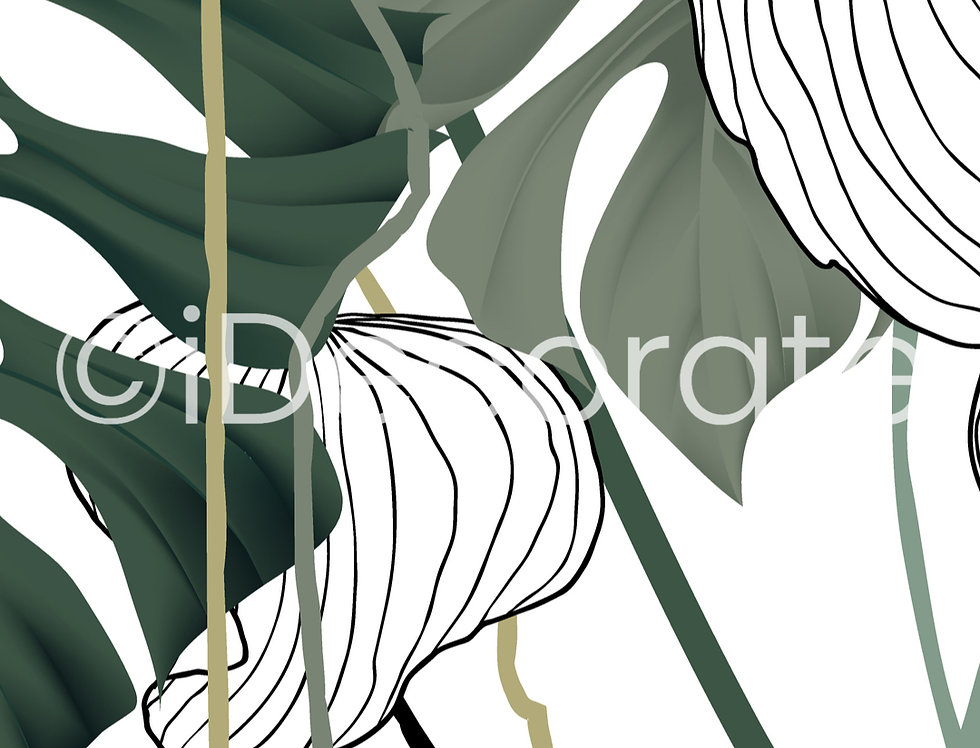 Split-leaf Philodendron Wallpaper