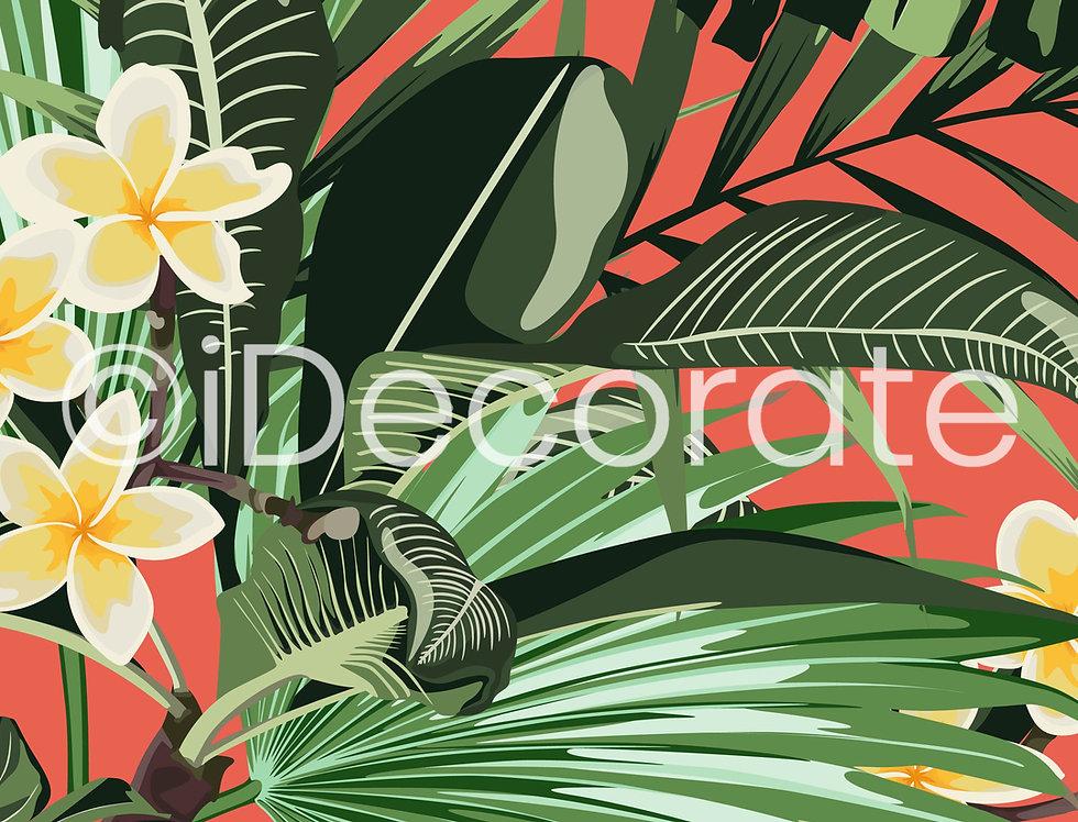 Plumeria Tropical Wallpaper
