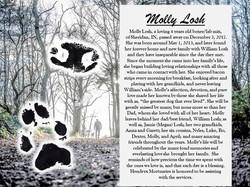 Molly Losh