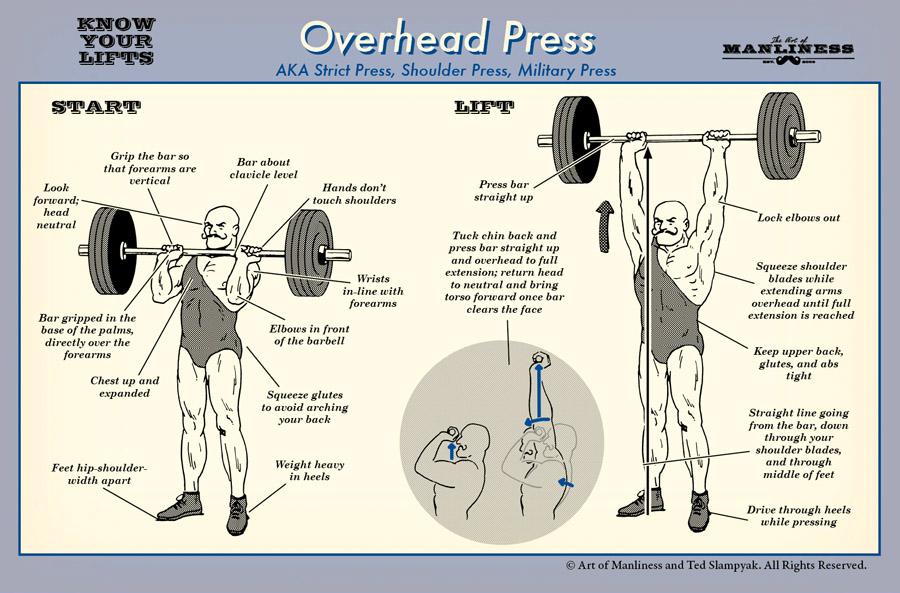 32817 Shoulder Boulders Transcend Fitness