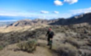 Palm Canyon Epic Day Trip.jpg