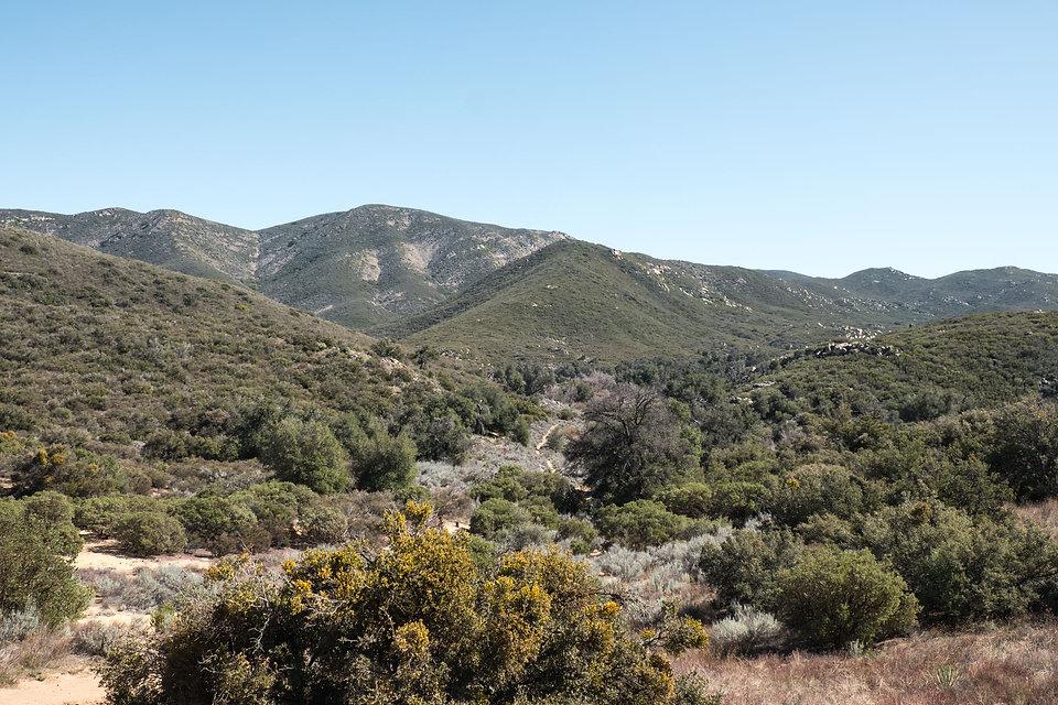 MTB Trails 1.jpg