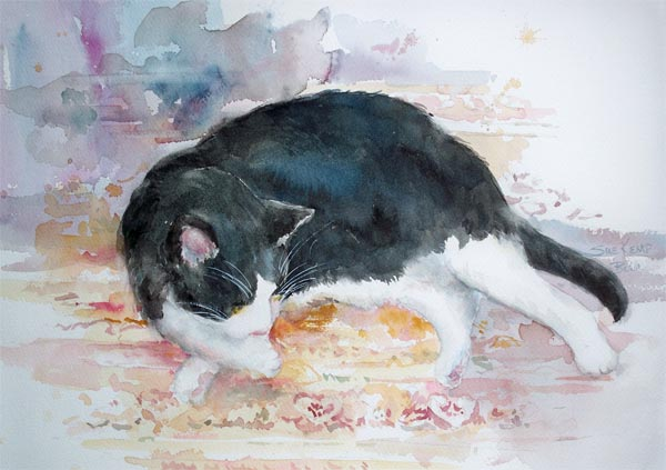 """""""Cat Napping"""" ©"""