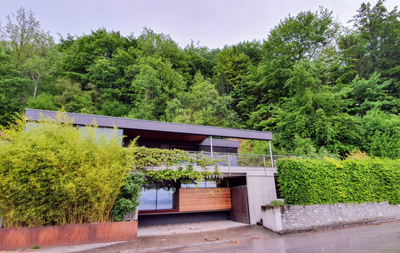 Haus Christa Buchinger, Traunsee, 2019