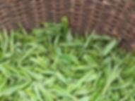 Tea_leaves.JPG