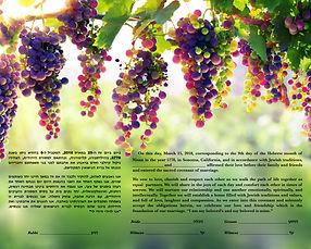 Ketuba 1 Hanging Grapes.jpg