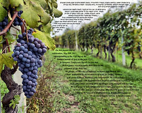 Ketubah 2 Vineyard Row.jpg