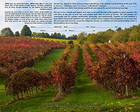 Ketubah 14 Fall Vineyard low.jpg