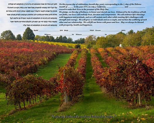 Fall Vineyard 16 x20