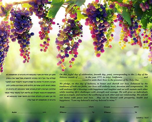 Hanging Grapes  16 x20