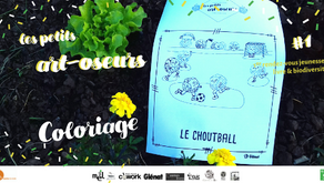 Coloriage #3 : Le choutball !
