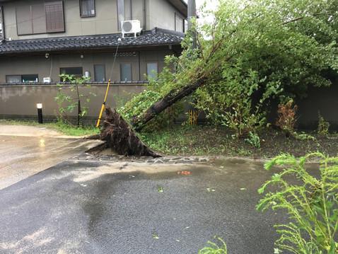 台風21号🌀🌀🌀