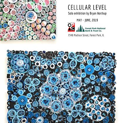 Cellular Level I.png