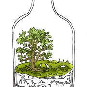 treerarium.jpg
