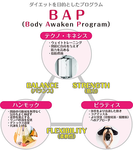BAP_2.jpg