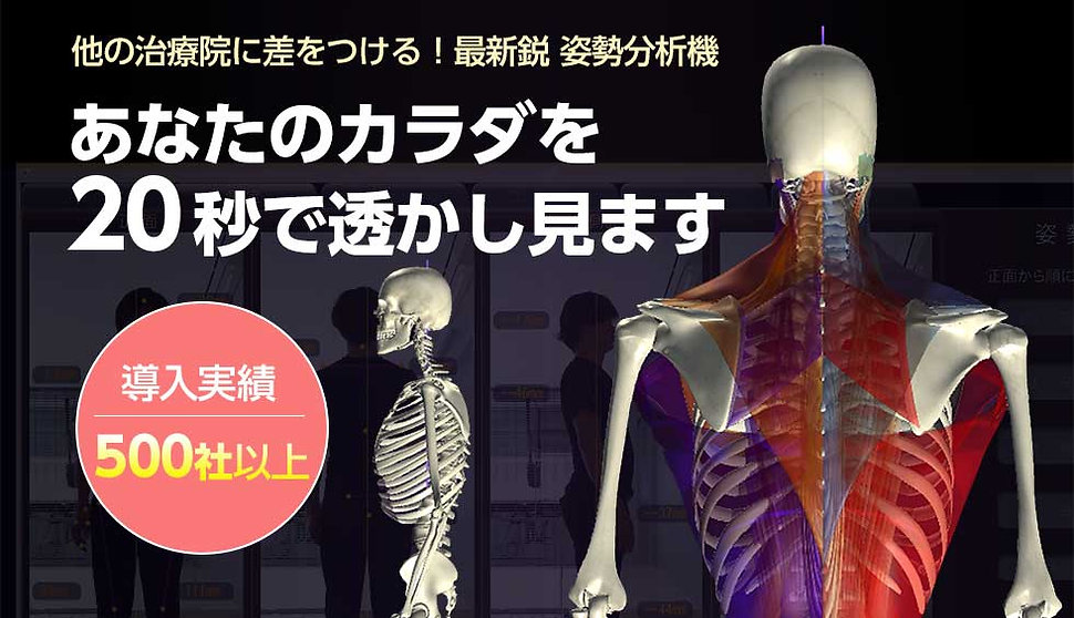body_3.jpg