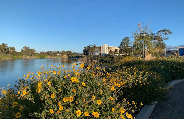 view of UCSB campus and lagoon