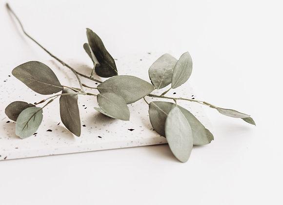 Kunststof - Eucalyptus takje