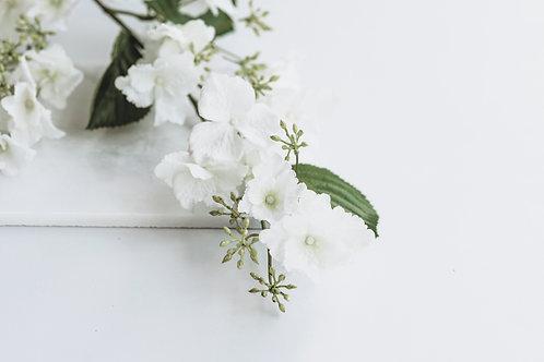 Hydragena wit