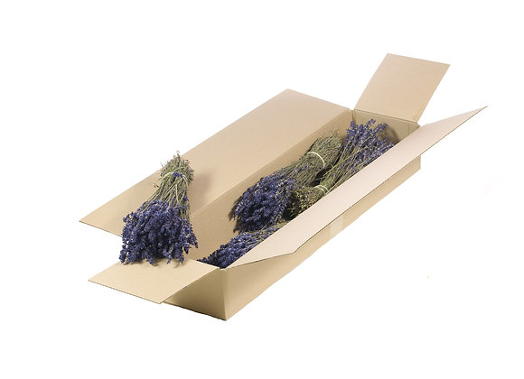 Droogbloemen - Lavendel