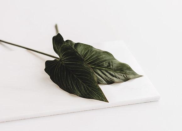 Kunststof - Philodendron (3 takjes)