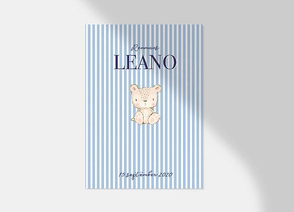 Collectiekaart | Leano