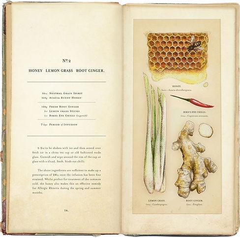 Nostrum_Remedium_Book_Illustrated_Spread
