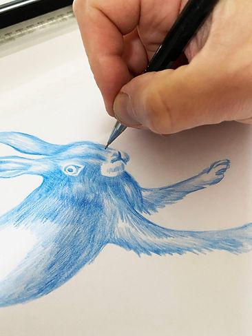NT Hare Pencil WIP.jpg
