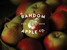 Gallery Cover Image - Random Apple.jpg