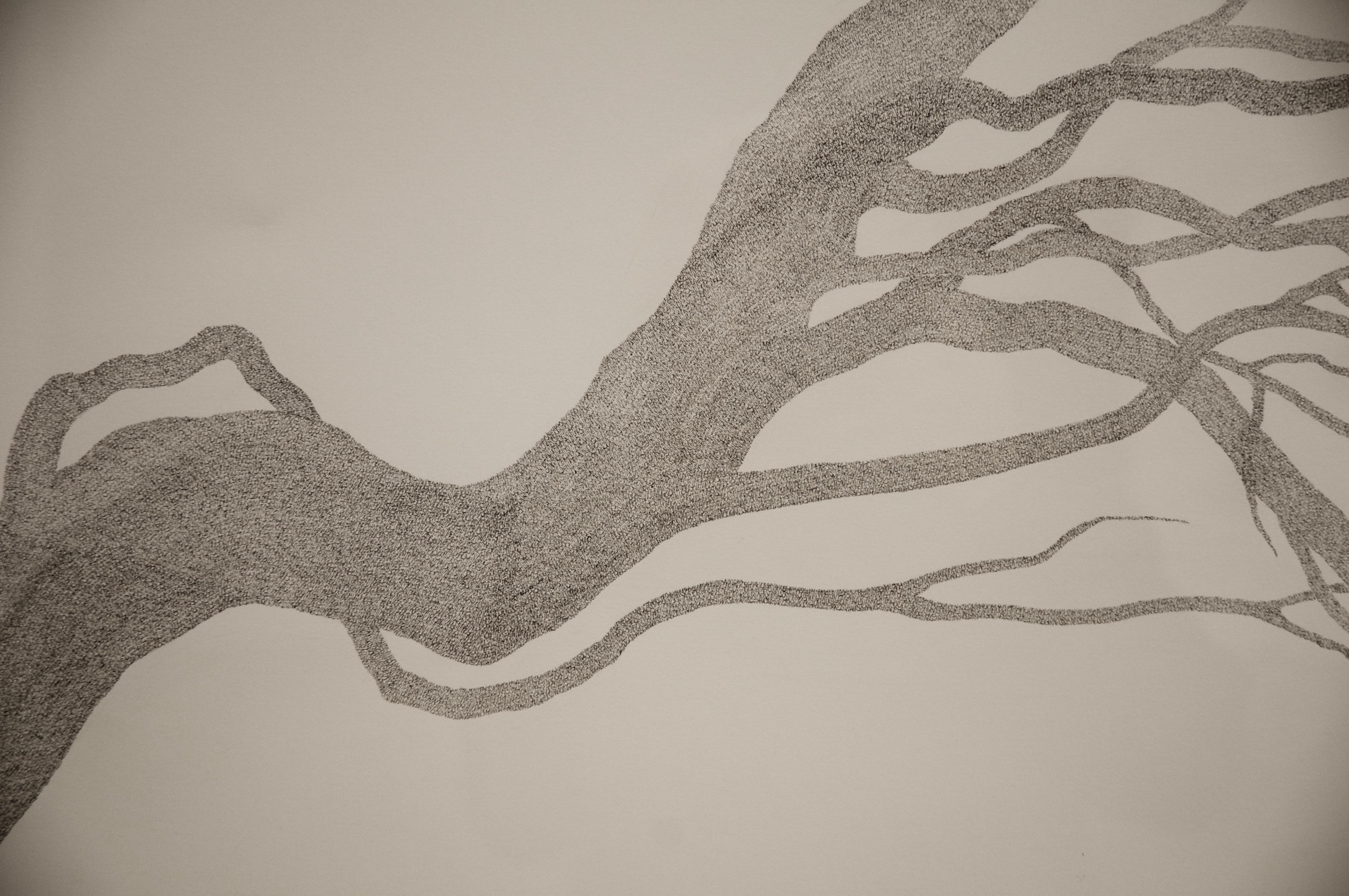Juniper, detail