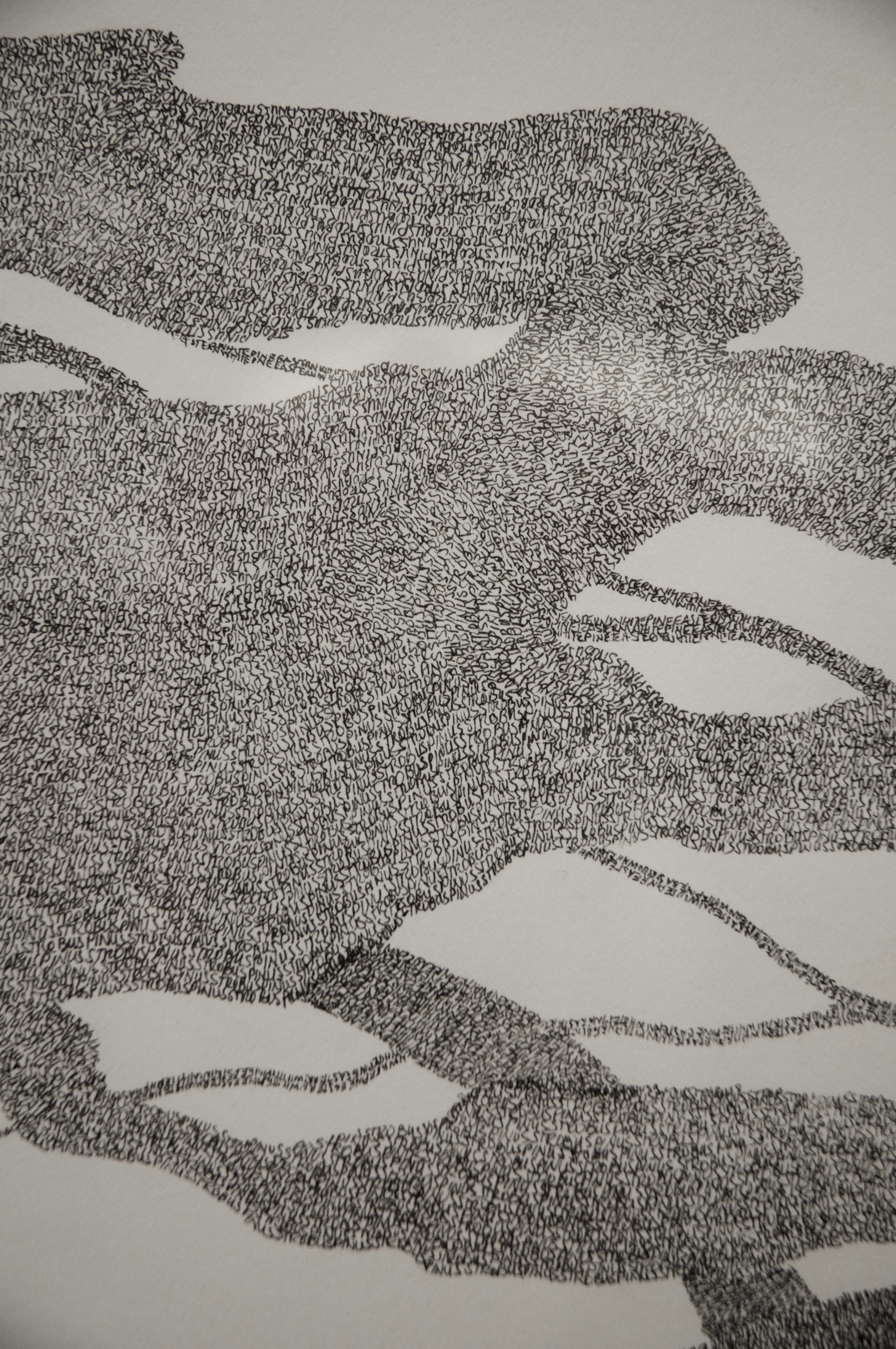 Eastern White Pine, detail