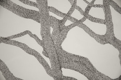 Hawthorne, detail