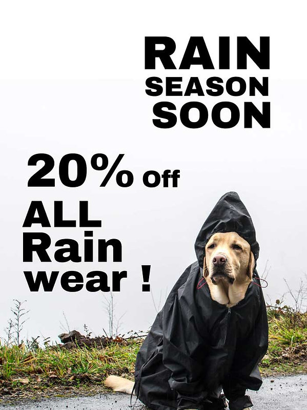 RAIN-DOG-SIGN-10-2020.jpg