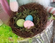 Egg Nest - SM