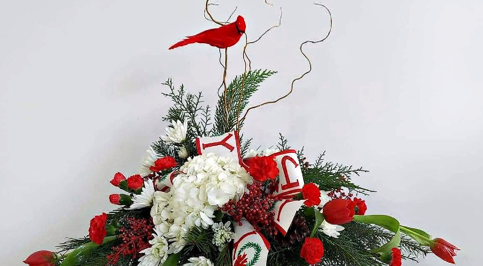 Bird of Christmas