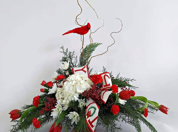 Bird of Christmas