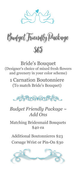 Wedding Package - Budget.jpg