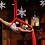 Columbus, Ohio Aerial Acts- Aerial Performers - Corporate Entertainment - Trade Show Entertainers - Columbus OH Events