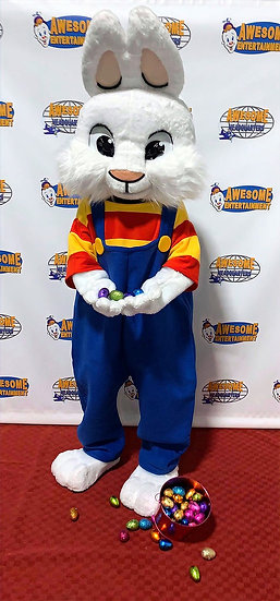 Bexley Ohio Party Characters for hire Colubmus Ohio birthday party characters for rent Cincinnati Ohio